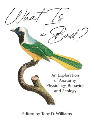 9780691200163 What is a bird
